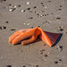 ORANGE RUBBER GLOVE ON THE BEACH