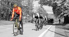 Notre champion olympique Greg Van Avermaet, Liège-Bastogne-Liège 24/04/2019 (claude lina) Tags: claudelina belgium belgique belgië vélo bike course coursecycliste race liègebastogneliège classique monument sprimont dolembreux louveigné gregvanavermaet