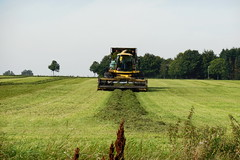 Picking up grass (Steenjep) Tags: landskab landscape field mark himmel sky landbrug farming græs grass