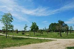 Parc Fontaine Saint-Martin