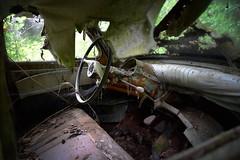 Panhard PL17 (à l'oeil de verre photographie) Tags: épave rouille volant arbre forêt feuilles feuille perdu végétation wreck lost mousse àloeildeverrephotographie