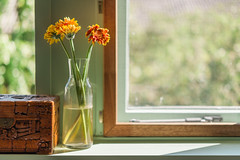 Spring Flowers (Roderick van der Steen) Tags: nikon d700 zeissmilvus50mmf14distagon zeiss zf2 milvus1450 f14 flowers windowlight naturallighting naturallight green