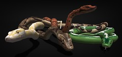 JIAN WIP Boa ([JIAN]) Tags: secondlife snake snakes boa constrictor animals pets jian wip sneakpeek