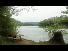 ViaRhenana 14 (Beat09) Tags: natur nature schweiz switzerland suisse rhein rhine rheinufer river fluss wasser water