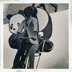#goodpandacontest ----------------- [in Explore] (ghiro1234 [♀]) Tags: goodpandacontest hipstamatic