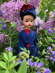 Hello from Miss Poppins (Foxy Belle) Tags: doll mary poppins tammy reliable canada brunette hat blue red flower outside garden lilac vintage collection