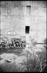 abandoned warehouse, graffiti, architecture, Asheville, NC, Rollei Prego 140, Foma Retro Pan 320, HC-110 developer, late April 2019 (steve aimone) Tags: warehouse abandoned architecture graffiti urbandecay urbanlandscape asheville northcarolina rolleiprego140 fomaretropan320 hc110developer 35mm 35mmfilm film compactcamera monochrome monochromatic blackandwhite