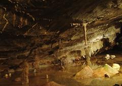 Gough's Cave, Cheddar (Colin Pinchen) Tags: goughs cave cheddar somerset england landscape stalagtite stalagmite geology rock colin pinchen