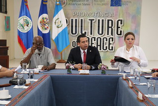 Visit of Guatemalan Foreign Minister