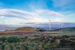 17/52  Renewable Energy (Marty Cooke) Tags: outdoor outside irelandsmountains irishhistory ireland windturbines windmills landscape landscapes arigna westofireland connacht connaught leitrim lovelyleitrim countyleitrim roscommon coroscommon rivershannon coalmining