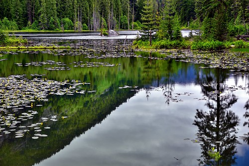 Howard Lake and Water Reflections (North Cascades National Park Service Complex)