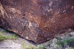 Newspaper Rock, Arizona (walkerross42) Tags: petroglyphs rockart newspaperrock petrifiedforest nationalpark arizona digital image photo ancient