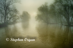 Foggy morning on the river (Stephen Organ Photography) Tags: knoxcounty landscape