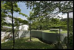_3502515 copy (mingthein) Tags: thein onn ming photohorologer mingtheincom availablelight lake gardens kuala lumpur kl malaysia nikon d3500 afp 1020 f4556 dx vr afp1020
