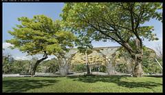 _3502333 copy (mingthein) Tags: thein onn ming photohorologer mingtheincom availablelight lake gardens kuala lumpur kl malaysia nikon d3500 afp 1020 f4556 dx vr afp1020