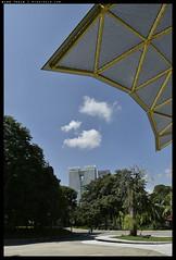 _3502339 copy (mingthein) Tags: thein onn ming photohorologer mingtheincom availablelight lake gardens kuala lumpur kl malaysia nikon d3500 afp 1020 f4556 dx vr afp1020