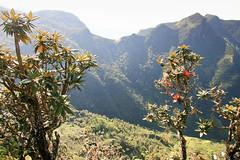 Great World's End (Ralph Apeldoorn) Tags: greatworldsenddrop hortonplains nationalpark srilanka ratnapura