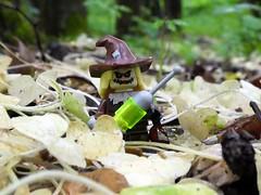 Flickr Injection (captain_joe) Tags: toy spielzeug 365toyproject lego minifigure minifig batman cmf smallwort scharbockskraut scarecrow