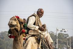 Pilgrim, Kumbha Mela, Allahabad (Valdas Photo Trip) Tags: india allahabad kumbha mela street photography travel