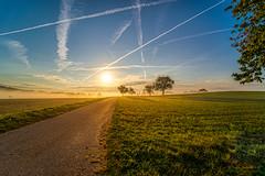 Sonnenaufgang, Dunst und Flugverkehr über Birkingen