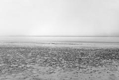 beach (ro_ha_becker) Tags: leicaii industar2850mm kodak100tmax meinfilmlab sea northsea seascape minimal monochrome schwarzweiss biancoenero blancetnoir blackandwhite blancoynegro zwartwit analogue film beach