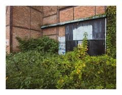 170930_172545_oly-PEN-f_heusden-zolder_de schacht_7/9 (A Is To B As B Is To C) Tags: aistobasbistoc b belgië belgium limburg heusdenzolder deschacht koolmijn mijnwerkerslaan industrialheritage industry industrial brick brickwork steelframe wall door green nature sign graffiti tag tags corner olympus penf color