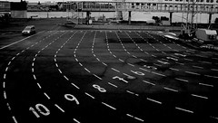 Helsinki Ferry Terminal (Joshua Khaw) Tags: road lanes markings numbers countdown count pattern monochrome black white paint ferry terminal urban helsinki finland