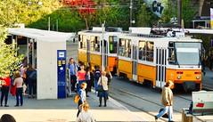 Tram in Budapest (Chridage) Tags: budapest buda pest széllkálmántér ungarn magyarország hungary strasenbahn trambahn tram streetcar tramway