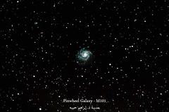 Pinwheel Galaxy - Messier 101 مجرة الدولاب  وهي تبعد عنا ما يقارب ال ٢١ مليون سنة ضوئية. وتحتوي هذه المجرة على تريليون نجمة! ويبلغ قطرها ١٧٠ ألف سنة ضوئية!  بالإمكان الحصول على تفاصيل أكثر، لكن اكتفيت بتعريض الكاميرا لفترة ٤٥ دقيقة فقط. (ebrahemhabibeh) Tags: pinwheelgalaxy galaxy milkyway astrophotography