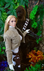 Stand Down Chewie (Blondeactionman) Tags: hot toys chewbacca star wars phicen doll photography space adventure agentsofbam bamhq onesixthscale diorama playscale