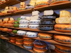 Alles Käse / Everything cheese (ludwigrudolf232) Tags: käse niederlande speisen