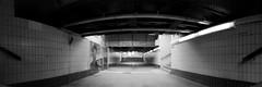 tr003 (nuszka) Tags: realitysosubtle wideangle pinhole rollei ortho25 berlin analogue analog darkroom pyro