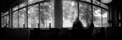 tr002 (nuszka) Tags: realitysosubtle wideangle pinhole rollei ortho25 berlin analogue analog darkroom pyro