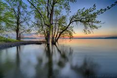 Sunrise shadows (walts photos) Tags: grandisle lakechamplain namedplaces northamerica northhero unitedstates vermont landscape manmade object scenic sunrise water what where