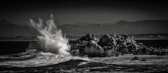 Splash on the Rocks B&W (CDay DaytimeStudios w /1 Million views) Tags: ca pebblebeach water 17miledrive pacificcoasthighway bluesky california highway1 montereyca pacificgrove carmelca ocean pacificcoast beach sky seascape coastline landscape rocks montereybay