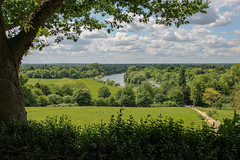 River Thames from Richmond Hill - UK (phil_king) Tags: richmond hill river thames view england london uk landscape panorama