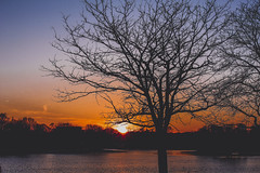 Simply a distraction I didn't hope to find (gabyuchi1) Tags: gloom gloomy mood moody amazing sunset sunrise sunbath water nature green color colors colorful washington washingtondc red orange blue