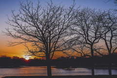 Simply a distraction (gabyuchi1) Tags: gloom gloomy mood moody amazing sunset sunrise sunbath water nature green color colors colorful washington washingtondc red orange blue