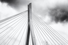 Köhlbrandbrücke (Klaus Stueckmann) Tags: schwarzweis pylonen seile brücke köhlbrandbrücke 2019 brittashafentour elbe franzbrötchen hafen hamburg mai rundfahrt