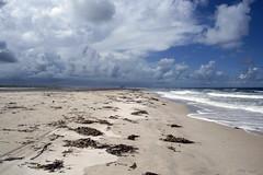 Amazing Nature (Luiz Augusto Dantas) Tags: praia beach sol sun sand areia natureza nature nuvens clouds nublado cloudy