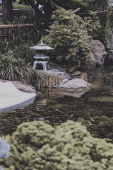 Tower Pond (gabyuchi1) Tags: gloom gloomy mood moody pond green nature chinese color colorful colors