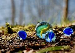 Il me rapportera une bille de verre... (Jean-Pierre Bérubé) Tags: marbles bille verre couleur jpdu12 jeanpierrebérubé d5300 nikon