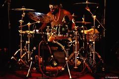 ANTHONY JOSEPH    DSC_4174    MIRABELWHITE (Mirabelwhite) Tags: anthonyjoseph concert trinidad poet poete heavenlysweetness newmorning paris spokenword bird head son birdheadson france