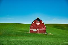 Palouse Barn (Kuby!) Tags: kubitschek kuby nikon d810 may 2019 along palouse highway hwy red barn outdoors spring field
