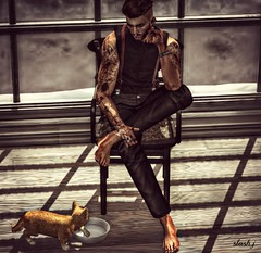 My Cat Need Smoke ... ♥♥ (slash marciano) Tags: smoke cat chat fumer cigarette cigaret ana pose want window chair hair background carreaux rings suspender