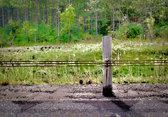 Guarded (HSS) (13skies) Tags: hss happyslidersunday guardrail roadway highway effect processing topaz art digitalart wire safety driving guard slidersunday postprocessing postwork