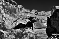 A Tonal Contrast Across the Rocks and Layers of the Hickman Bridge (Black & White, Capitol Reef National Park) (thor_mark ) Tags: anseladamslookfromcapturenx2 azimuth309 blackwhite blueskies canvas capitolreefnationalpark capturenx2edited centralutahplateaus colorefexpro coloradoplateau day3 desertlandscape desertmountainlandscape desertplantlife fishlakeplateau hickmanbridge hickmanbridgetrail highdesert intermountainwest landscape layersofrock lookingnw monocline naturalbridge nature nikond800e outside portfolio project365 sunny utahhighdesert utahnationalparks2017 waterpocketfold waynewonderland ut unitedstates