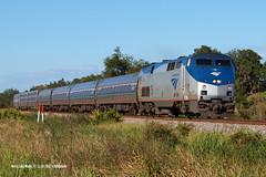 171118_06_AMTK75_91wlw (AgentADQ) Tags: amtrak passenger train trains railfanning silver star west lake wales florida amtk 75