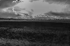The Grazers, the Winter Light and the Wide Open Spaces (jessicalowell20) Tags: adventure barbedwire blackandwhite clouds fence highplains highlights horizon horses moodysky northamerica prairie thewest travel winter wyoming