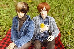 Picnic Time (flameonchoi) Tags: ringdoll sol kay norman merlin anime bjd asian flower flowers grass picnic nature love fashion kpop